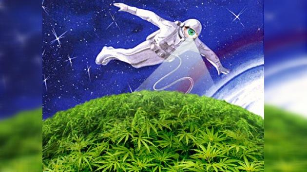 En Rusia buscarán plantaciones de marihuana desde el espacio
