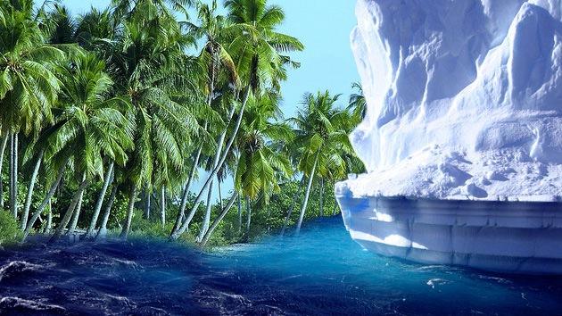 La Antártida fue una espesa selva tropical