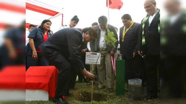 Perú encabeza programas de reforestación en Sudamérica