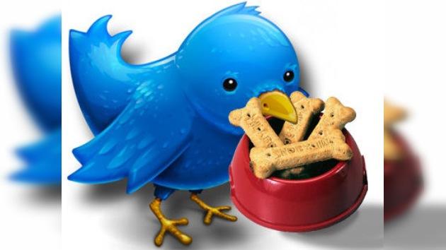 Twitter, la herramienta perfecta para alimentar a su mascota