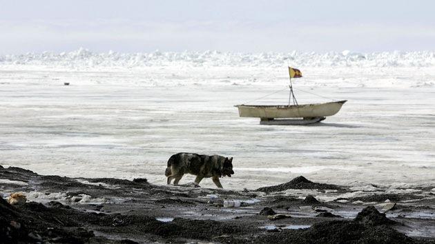 Científicos: El apocalipsis climático comenzará por la isla de Kivalina, cerca de Alaska