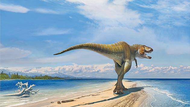 Descubren una nueva especie de dinosaurio antepasado del tiranosaurio rex