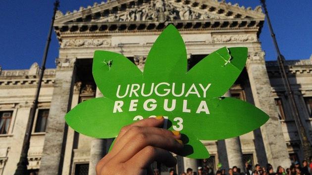 La OEA no apoya a Uruguay en la legalización de la marihuana