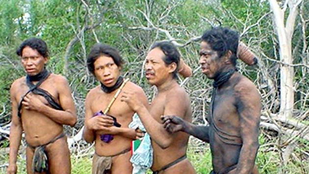 Una firma española, acusada de tala ilegal en territorio indígena paraguayo