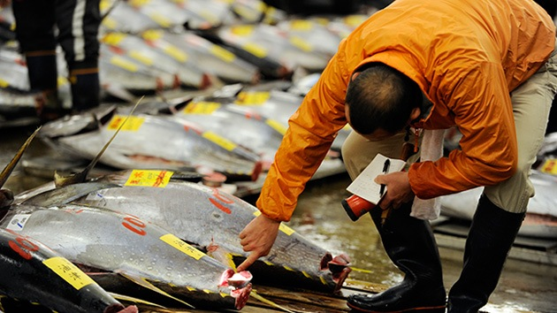 Japón pesca cesio radiactivo