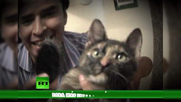 La lista de Erick: ¿Alguien habla felino? (E11)