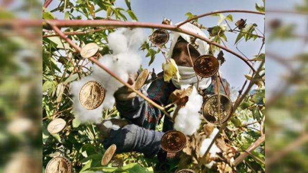 El precio asequible del algodón podría tener sus días contados