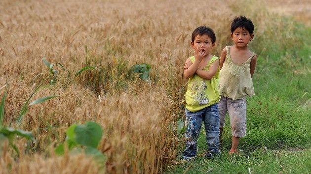 China 'conquista' el mundo para obtener comida