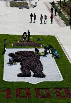 Yaroslavl: un oso en el escudo desde hace mil años
