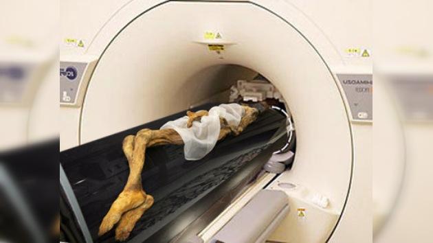 Un tomógrafo desentrañará el enigma de la momia de Kydym