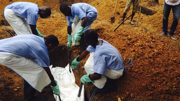 Infografía: Cómo el ébola destruye el organismo humano