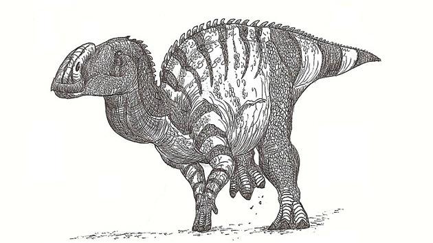 México halla fósiles de un dinosaurio narigudo