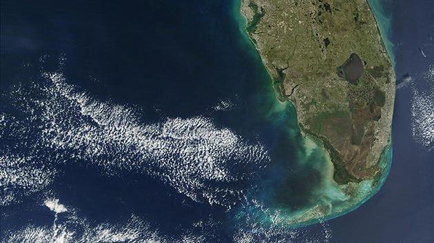 Una gran marea de algas rojas amenaza las costas de Florida