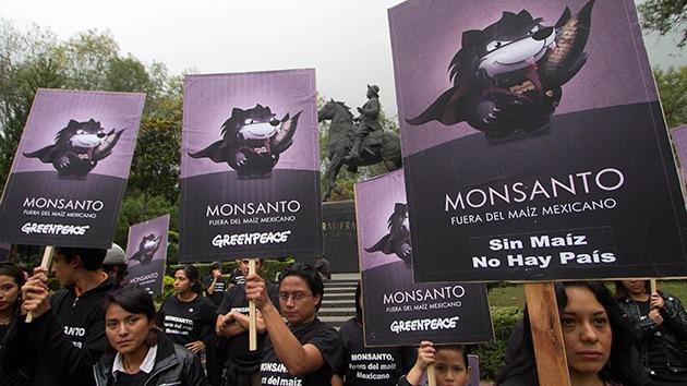 """Grito mundial: 40 países dicen """"no"""" a Monsanto"""