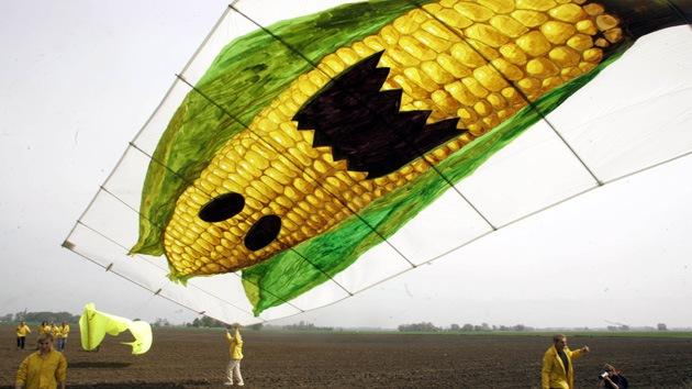 Los 10 temores sobre OGM incómodos para la industria alimentaria
