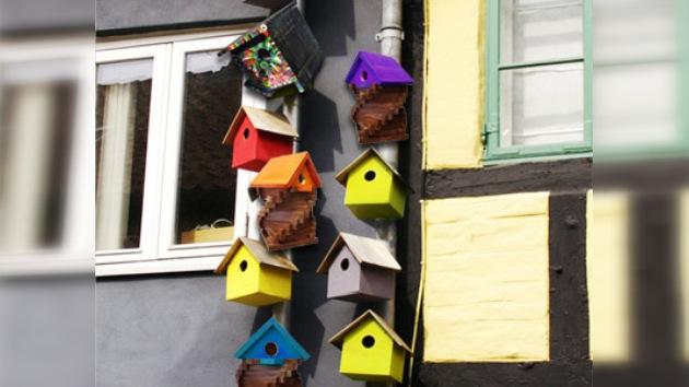 Nuevas tecnologías y glamurosa decoración para las casas de pájaros