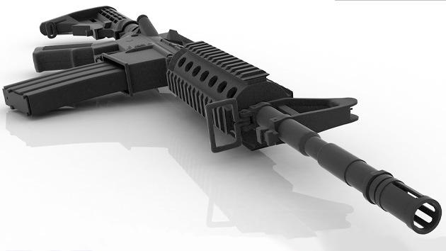 Senador republicano regalará un fusil el Día de la Independencia de EE.UU.
