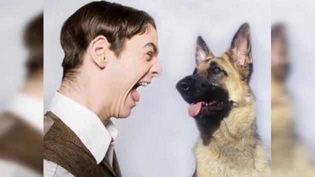 Un estadounidense comparece ante un tribunal por ladrar a un perro policía
