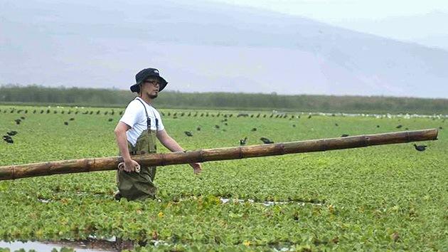 Descontamina él solo una laguna en Perú