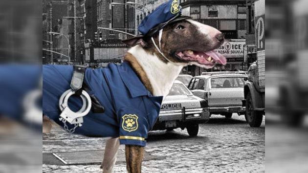 El vídeo del 'perro-patrullador' bate récords en Internet