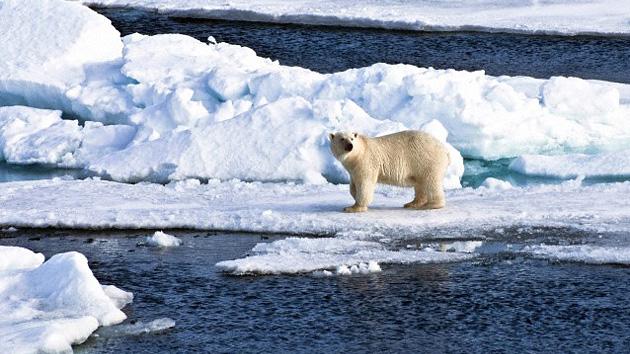 El Polo Norte se derrite: el deshielo en el Ártico bate récord
