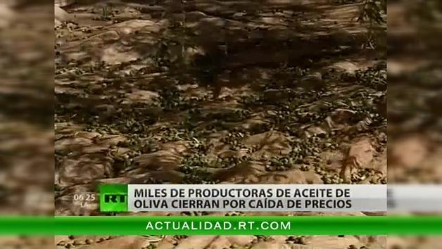 Miles de productoras de aceite de oliva cierran por caída de precios