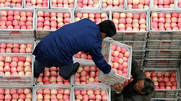 China construirá centros logísticos para la venta de productos agrícolas a Rusia