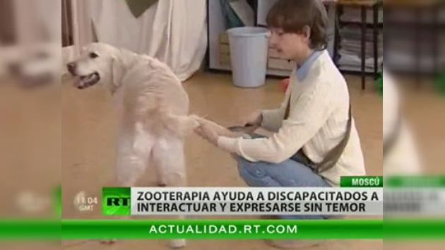 La terapia con animales, capaz de iluminar la vida de personas con discapacidad cognitiva