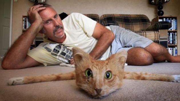 Alfombra de gato, a la venta en Internet por 955 dólares