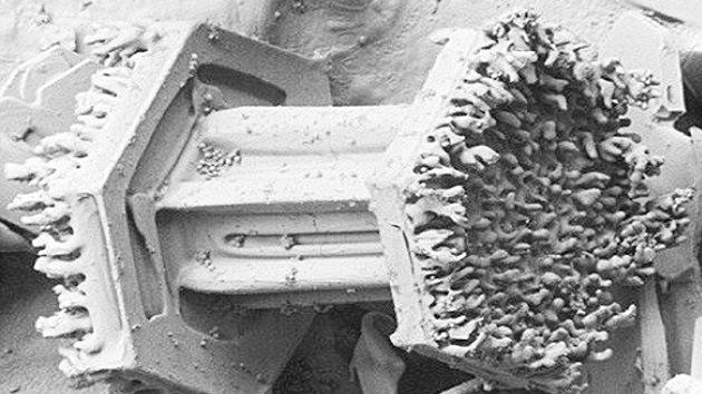 Sorprendentes imágenes de la nieve captadas con un microscopio congelado