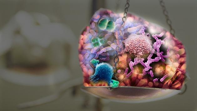 Peso que no se quita: las bacterias nos 'regalan' al menos un kilo en la báscula