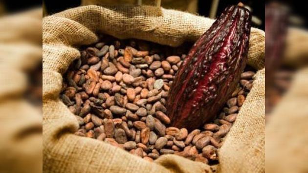 El cambio climático en Latinoamérica afecta a los productores de café