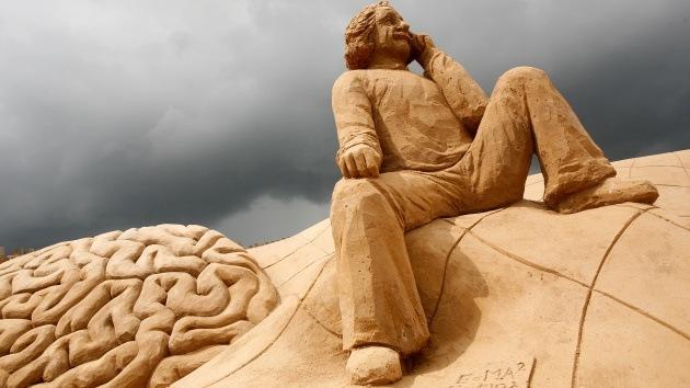 Misterio resuelto: el cerebro de Einstein no era único