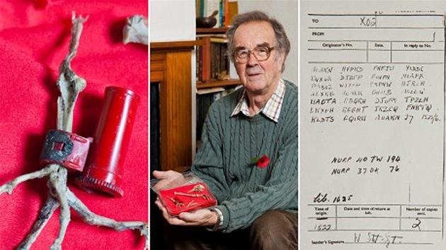 Una paloma mensajera de la II Guerra Mundial, enigma para la inteligencia británica