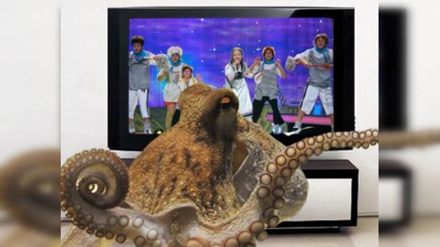 El pulpo Afonia podría predecir los ganadores del Eurovisión infantil