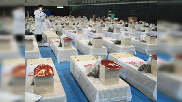 El número de muertos en la tragedia japonesa supera los 14.000