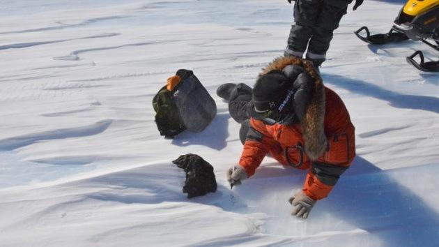 Descubren un enorme meteorito de 18 kilos en la Antártida