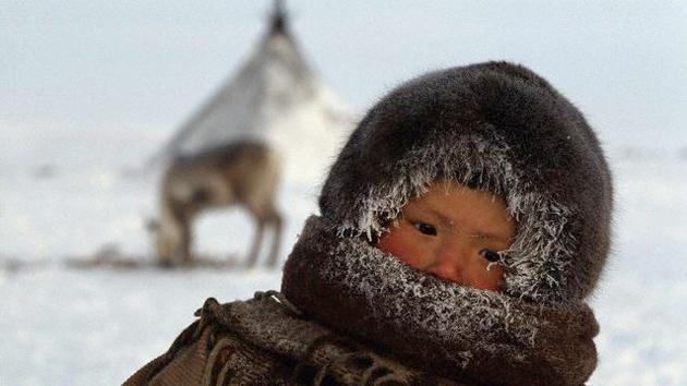 Confirman que el Homo Erectus llegó a Siberia hace un millón de años