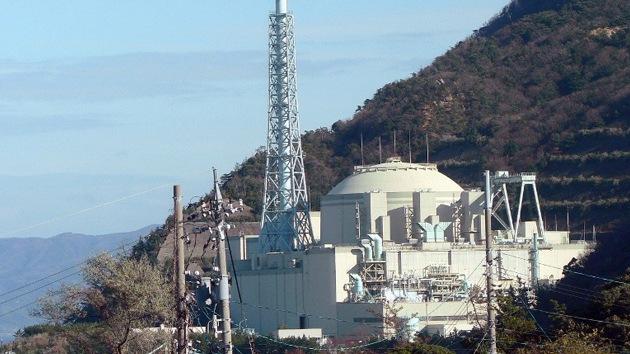 Una falla activa debajo de una planta nuclear en Japón, ¿otro 'Fukushima' a la vista?