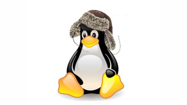 Rusia pasará a Linux para el año 2015