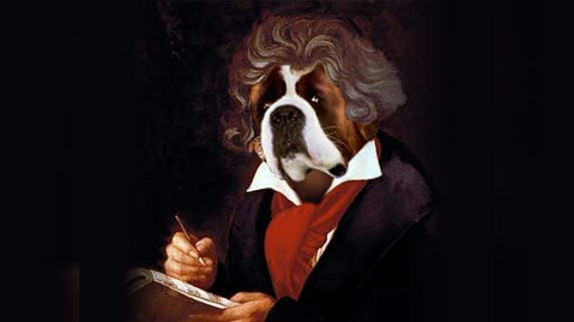 ¿Crees que Beethoven es un perro? ¡Bienvenido a la universidad!