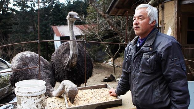 La historia del japonés que volvió a la zona radiactiva para cuidar a los animales