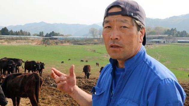 Un granjero arriesga su vida para salvar a vacas radiactivas cerca de Fukushima