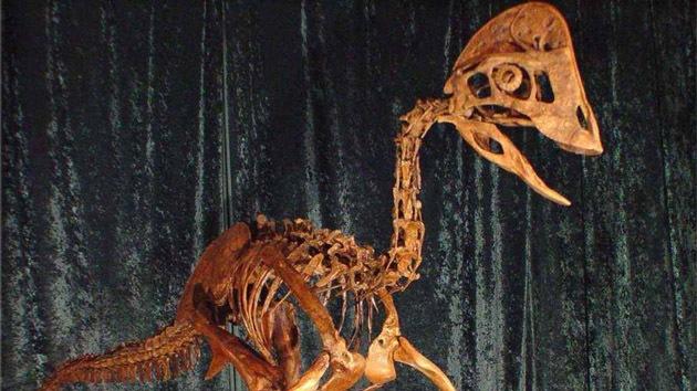 Descubren un dinosaurio apodado el 'pollo del infierno'