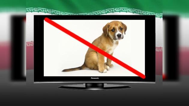 Irán prohibe los anuncios de mascotas