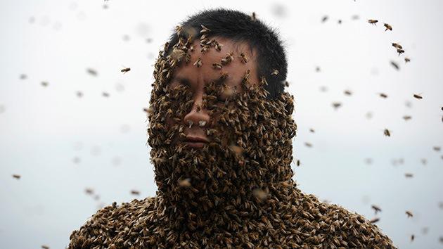 Fotos: Un apicultor chino promociona su miel cubriéndose todo el cuerpo de abejas