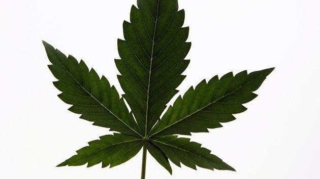 Legalización de la marihuana, apoyada por primera vez por la mayoría en EE.UU.