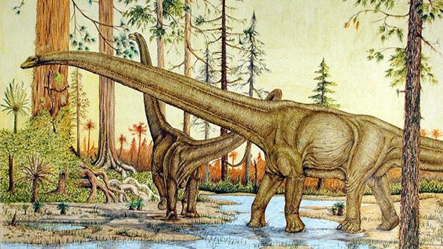 Video: Un dinosaurio gigante 'da sus primeros pasos' en millones de años