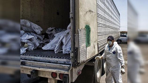 Llega a 332 el número de cadáveres hallados en 'narcofosas' en el norte de México