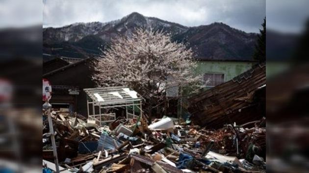 El crack de Lehman Brothers fue más devastador para Japón que el terremoto